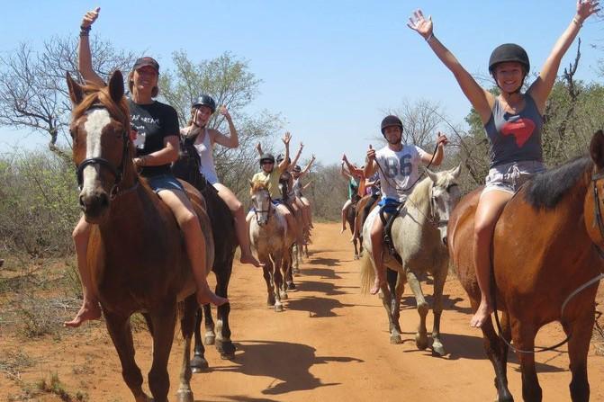 Horse Safari Africa Rachella 3