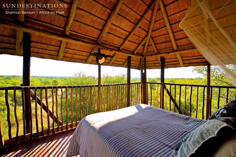 View-from-the-top-deck-of-the-treehouse-at-Africa-On-Foot