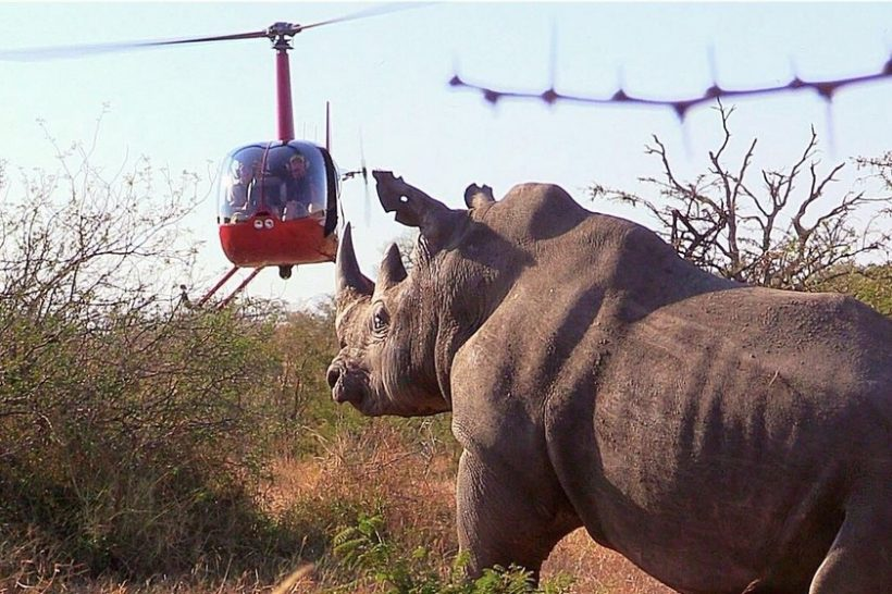 Hope-for-Wildlife-Helicopter_IMG_9160