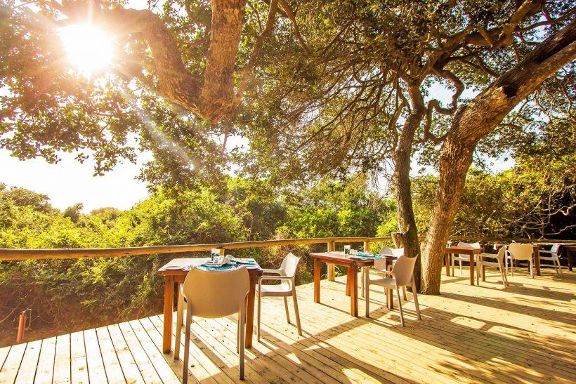 TBL-dining-deck-Kim-Steinberg