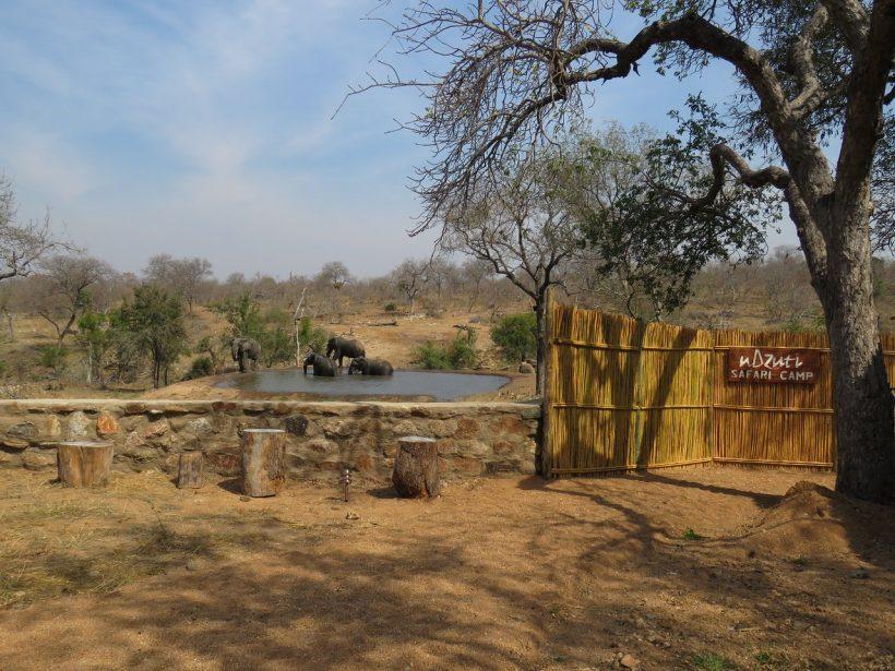 ndzuti-safari-camp (2)