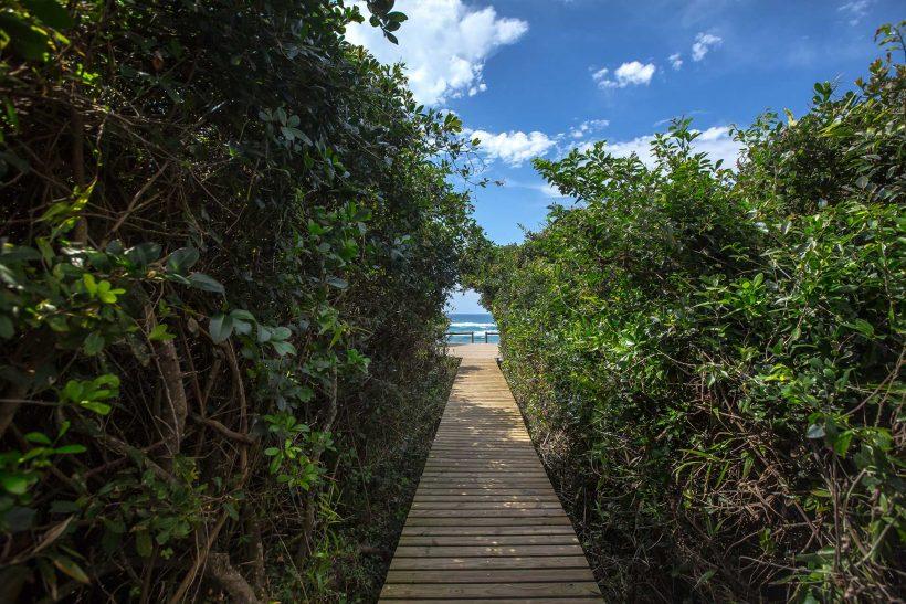 y-AD1A4017-beach-walkway